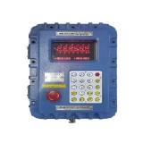 AD-2100EP|산업용 인디게이터|AND/에이엔디/에이앤디/indicator/계량용/인장용/압축용/저울/인디케이터/로드셀/load-cell/압력센서/중량센서